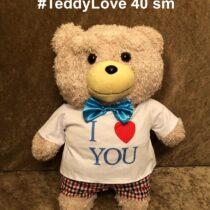 teddy oyuncaq ayı